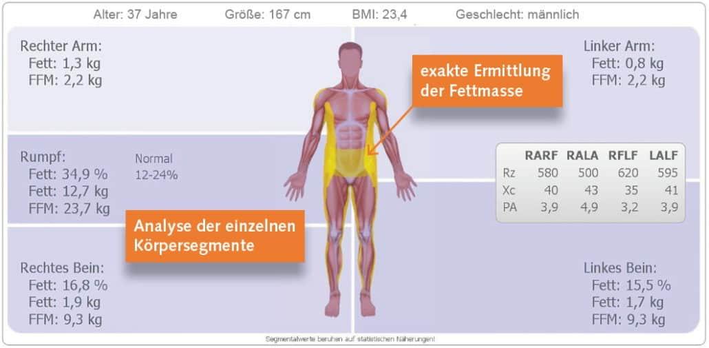 BIA Messung Sequment-Analyse