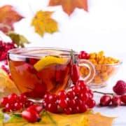 Herbst Teetasse