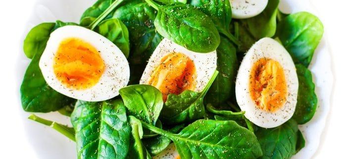 Spinat mit Ei